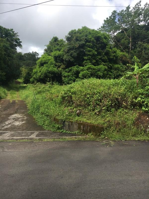 RE/MAX real estate, Grenada, Vendome, Black Forest