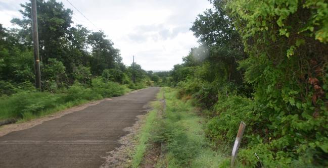 RE/MAX real estate, Grenada, Belle Isle, Beautiful lot at Belle Isle, St Davids....