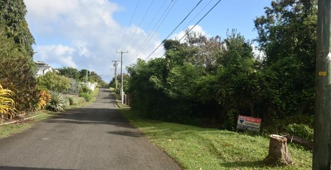 RE/MAX real estate, Grenada, Lance aux Epines, Multi-family residential plot.
