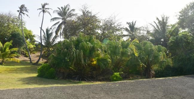 RE/MAX real estate, Grenada, Westerhall Point, Exotic! Beautiful! Luxurious! land located at Westerhall Point, St Davids