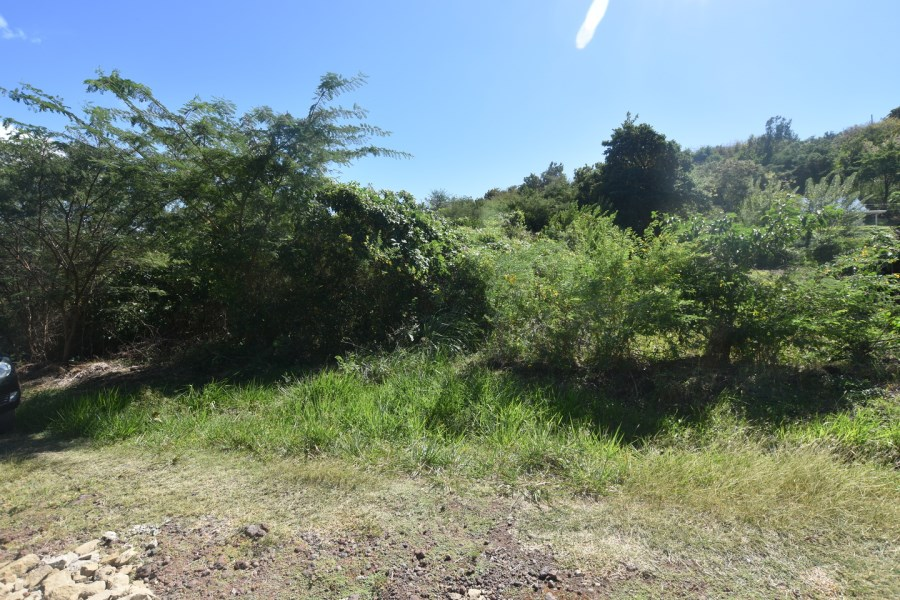 RE/MAX real estate, Grenada, Golflands, Residential land located at Golf Course, St. George's