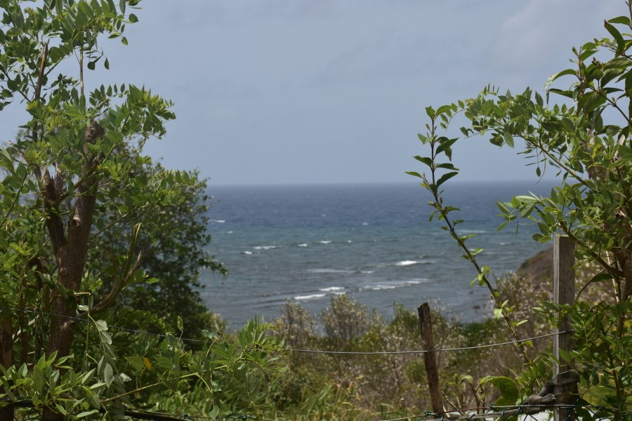 RE/MAX real estate, Grenada, Grenville, This Potentially Viable Parcel of Real Estate sits at Maho in St Andrews