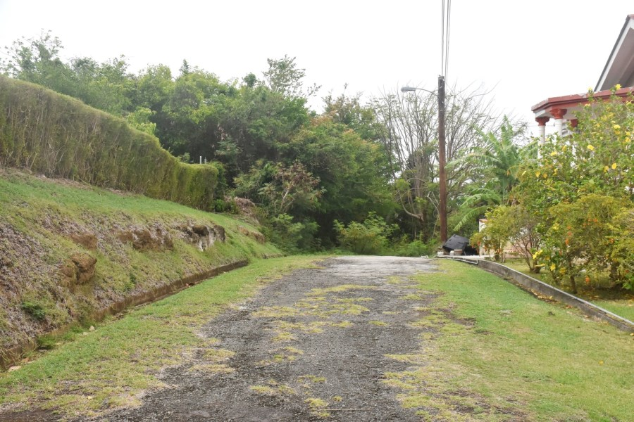 RE/MAX real estate, Grenada, Saint David's, Beautiful Parcel of Land at Westerhall Heights, St David's