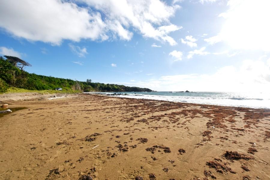 RE/MAX real estate, Grenada, Saint David's, Simply Remarkable!
