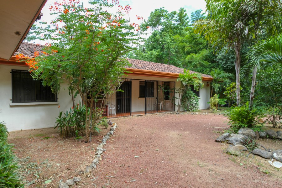 Remax real estate, Costa Rica, Playa Matapalo, Horse Lovers Dream