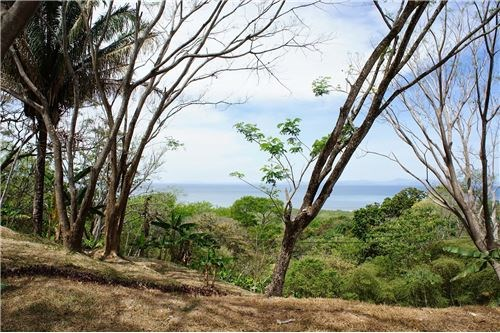 Remax real estate, Costa Rica, Tarcoles, Residential building lot in gated community