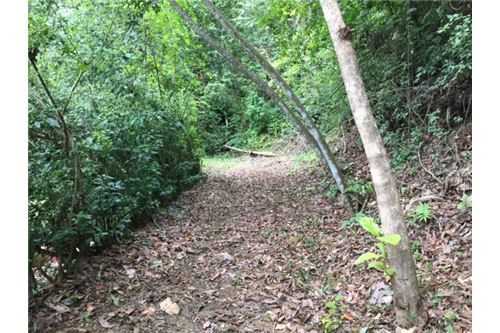 Remax real estate, Costa Rica, Hermosa Beach, Private Lot with a View