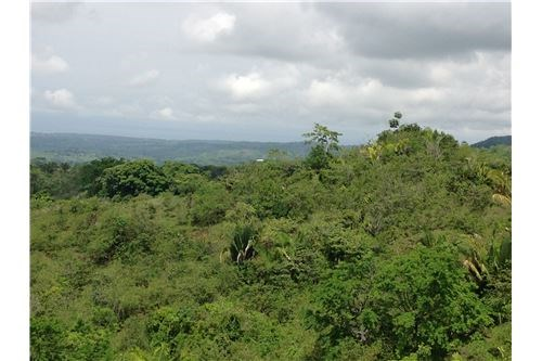 Remax real estate, Costa Rica, Parrita, Beautiful Parrita Land