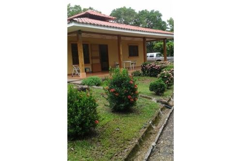 Remax real estate, Costa Rica, Alajuela, Sprawling acres with home and fruit trees