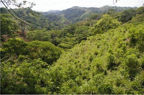 Remax real estate, Costa Rica, Puntarenas, Total of 19 lots subdividable