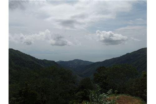 Remax real estate, Costa Rica, Puntarenas, Beautiful oceanview lot in Agujitas #3