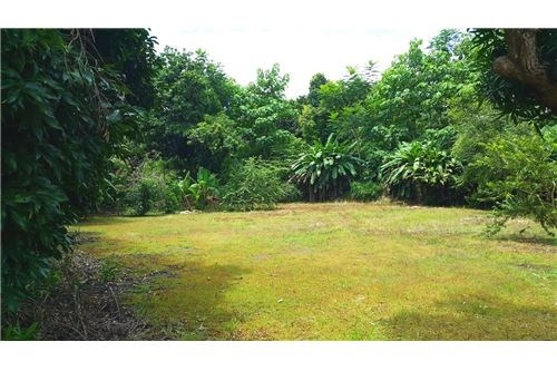 Remax real estate, Costa Rica, Puntarenas, Flat Property 400 Meters to The Ocean in Esterillos, Costa Rica