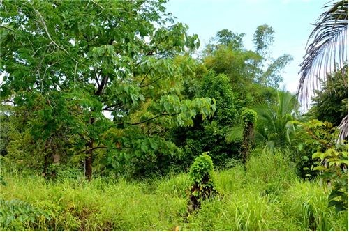 Remax real estate, Costa Rica, Esterillos, Large lot with great view close to the beach