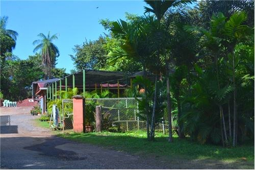 Remax real estate, Costa Rica, Jaco, Well Known Nursery , Successful Running Business