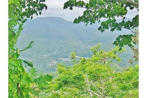 Remax real estate, Costa Rica, Herradura, Herradura Prime Development Property