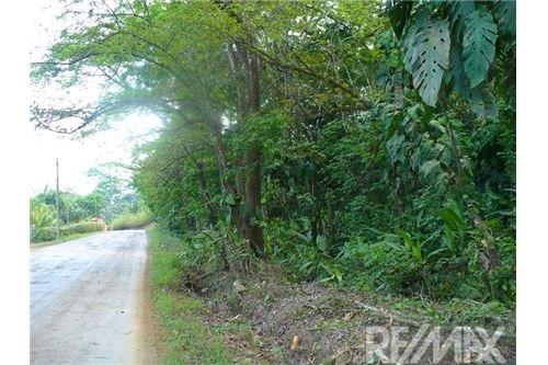 Remax real estate, Costa Rica, Punta Leona, Land next to Punta Leona white sand beach