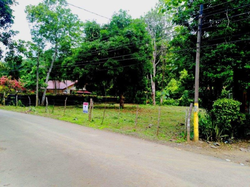 Remax real estate, Costa Rica, Jaco, Jaco large  forest lot ready to build