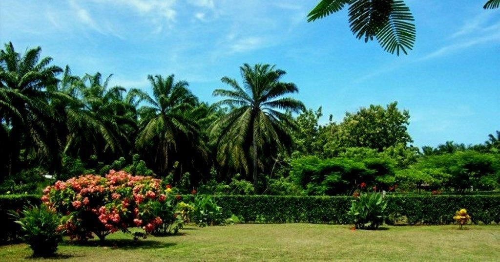 Remax real estate, Costa Rica, Puntarenas, Development with 10 lots ready to build