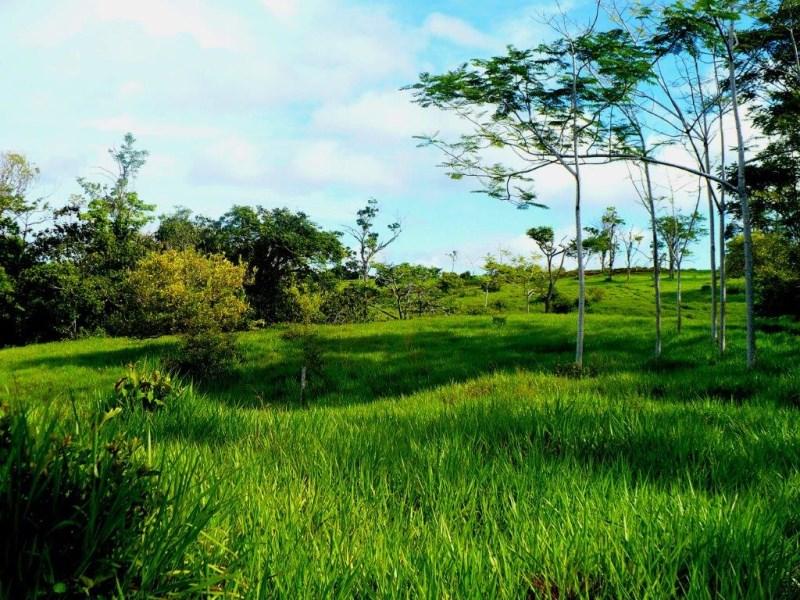 Remax real estate, Costa Rica, Esterillos, Esterillos ocean  panoramic view lot ready to build
