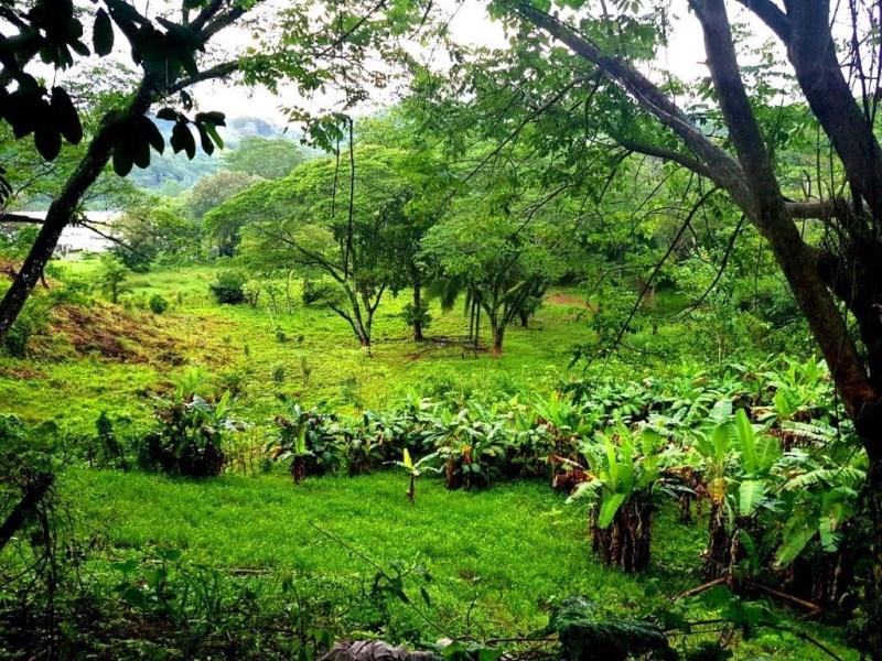 Remax real estate, Costa Rica, Puntarenas, REDUCED! Herradura large development land commercial residential