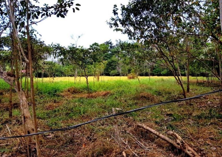 Remax real estate, Costa Rica, Jaco, Jaco Beach 2 acre land ready to build