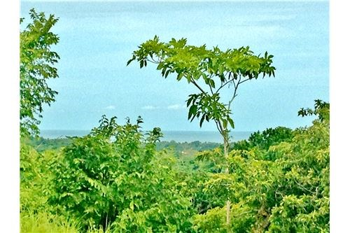 Remax real estate, Costa Rica, Esterillos, Monterey Ranch Development Property