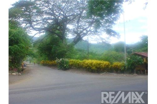 Remax real estate, Costa Rica, Quebrada Ganado, Development Property /Quebrada Ganado