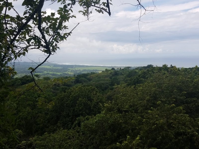 Remax real estate, Costa Rica, Hermosa Beach, Playa Hermosa land with ocean view