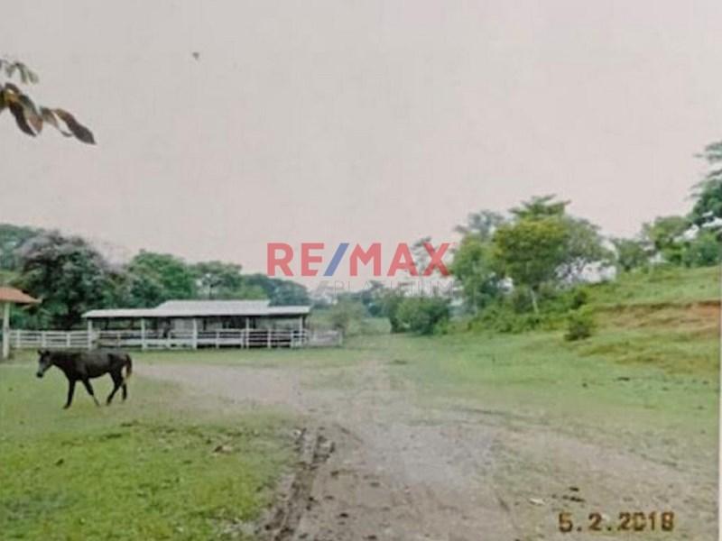 Remax real estate, Guatemala, Izabal,