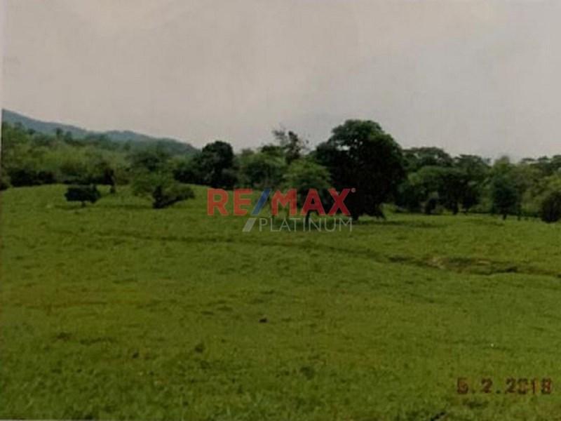 Remax real estate, Guatemala, Morales,