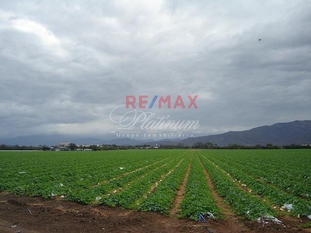 Remax real estate, Guatemala, Río Hondo,