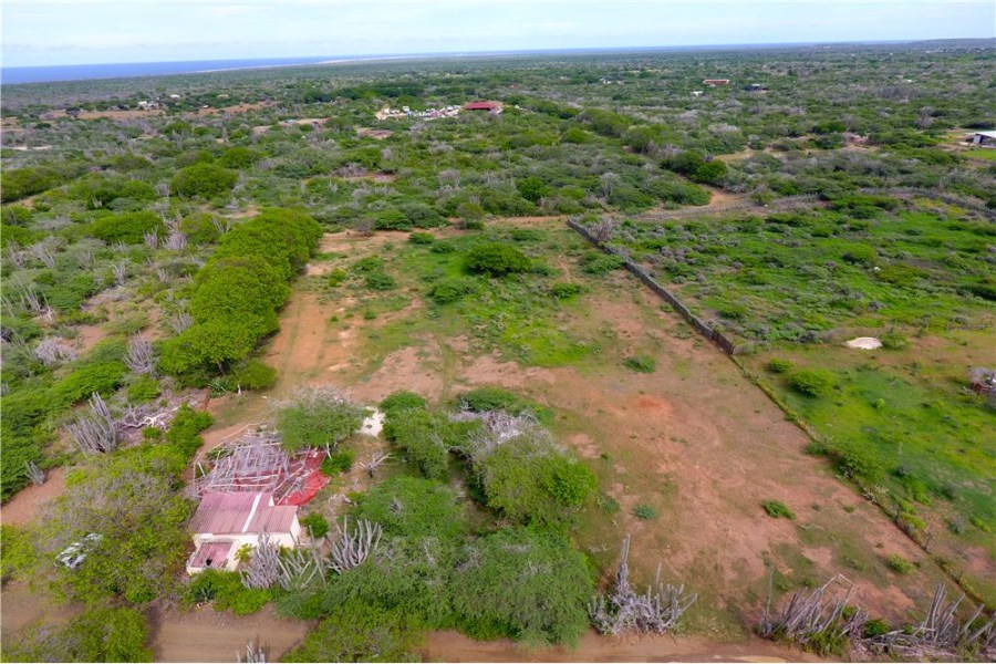 RE/MAX real estate, Bonaire, Kunuku Area, Large lot in the Middle of Nature