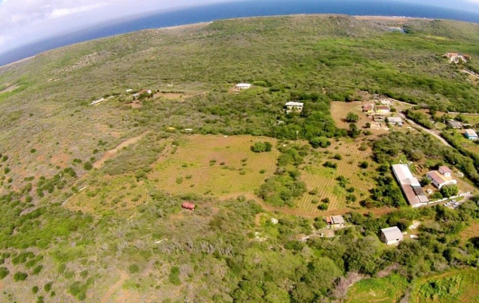 RE/MAX real estate, Curacao, Banda Abou, Banda Abou - large land for sale with flexible usage rights