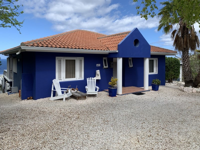 RE/MAX real estate, Curacao, Rif Sint Marie, Coral Estate - Family house with pool and a gorgeous sea view for sale