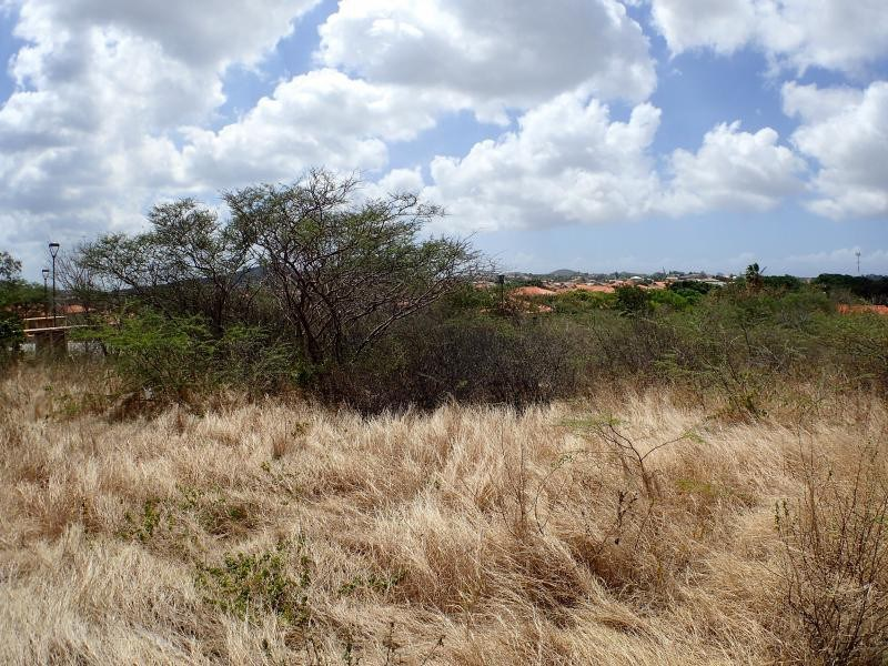 RE/MAX real estate, Curacao, Blue Bay Golf & Beach Resort, Blue Bay BO-31 - Build your dreamhouse on this large lot on a Resort
