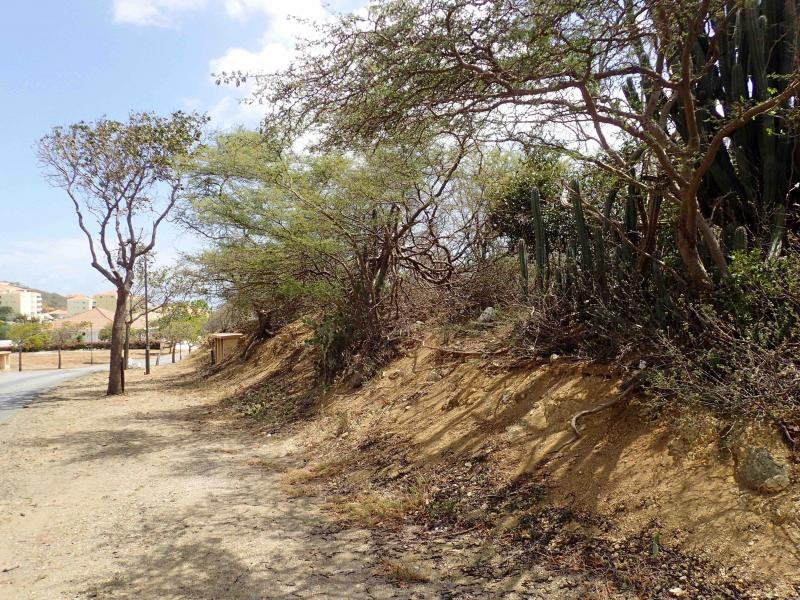 RE/MAX real estate, Curacao, Blue Bay, Blue Bay BK-19 - Large lot for sale on golf & beach resort