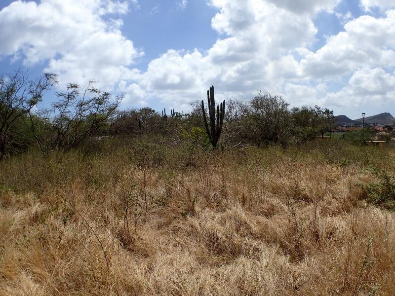 RE/MAX real estate, Curacao, Blue Bay, Blue Bay BO-30 - Spacious lot to build your dream house on