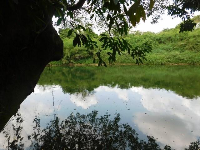 RE/MAX real estate, Belize, Belmopan, # 2032 - RIVERSIDE CABIN + 3.8 ACRES - near BELMOPAN CITY, CAYO