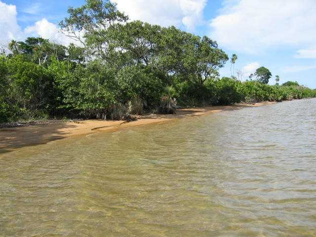 Remax real estate, Belize, Gales Point, # 2093 - 200 ACRES OF LAND + LAGOON FRONTAGE - BELIZE DISTRICT