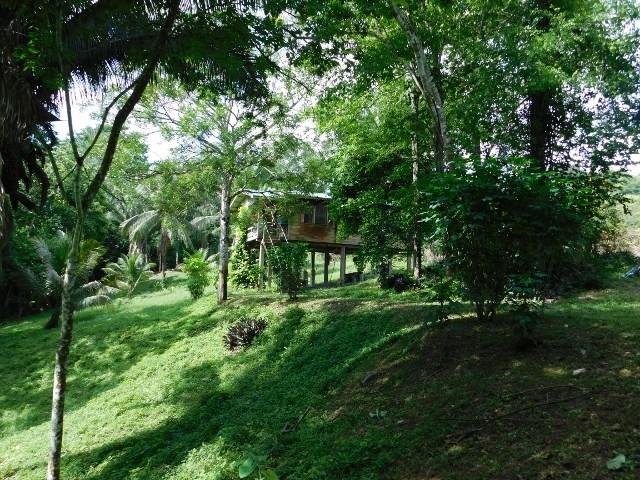 Remax real estate, Belize, San Ignacio, #2134 - 2 BEDROOM HOUSE ON 3 ACRES IN SAN IGNACIO, CAYO DISTRICT
