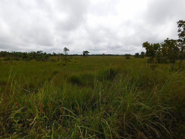 Remax real estate, Belize, Hattieville, # 2139 - 433 ACRES OF LAND CLOSE TO BELIZE CITY