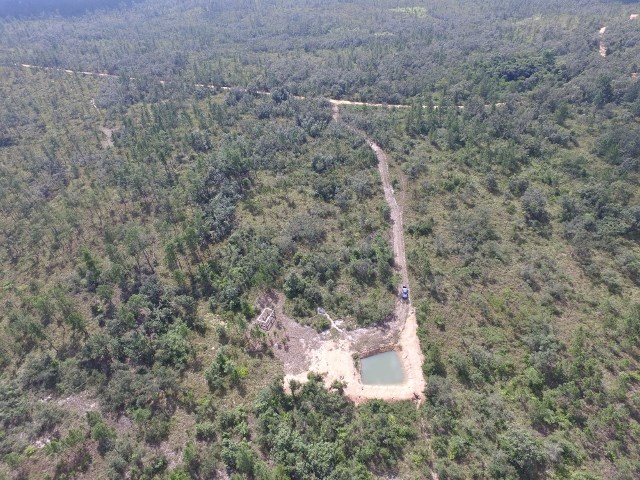 Remax real estate, Belize, Blancaneaux, #2153 - 5 ACRES OF LAND - MOUNTAIN PINE RIDGE RESERVE, CAYO DISTRICT