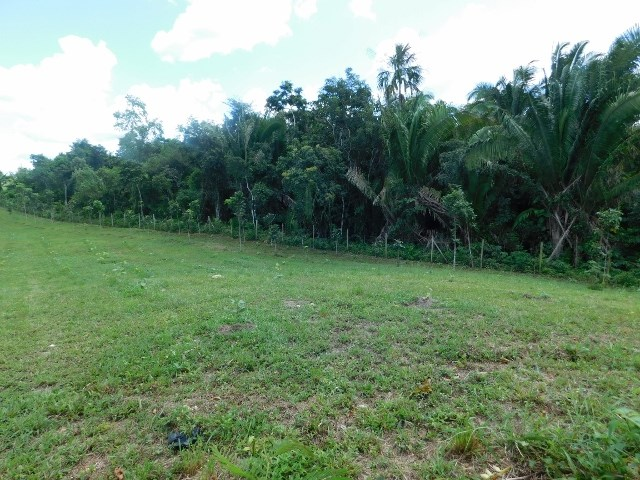 Remax real estate, Belize, Belmopan, # 2155 - 2 ACRES OF LAND - BELMOPAN CITY, CAYO DISTRICT