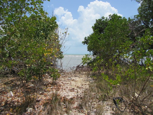 Remax real estate, Belize, Belize City, #2156 - 1.3 ACRES OF LAND ON THE CARIBBEAN SEA CLOSE TO BELIZE CITY