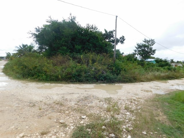 Remax real estate, Belize, Belize City, #2164 -  A RESIDENTIAL LOT LOCATED NORTH OF BELIZE CITY