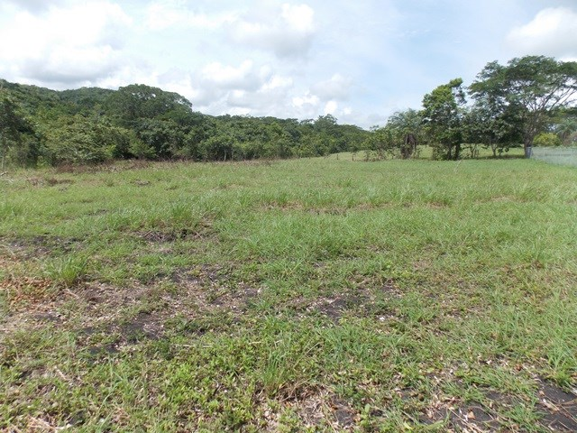 Remax real estate, Belize, San Ignacio, #2167 - ONE ACRE LOT - NEAR SAN IGNACIO TOWN, CAYO DISTRICT.