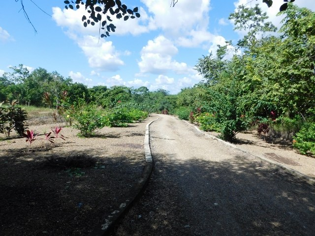 Remax real estate, Belize, Belmopan, #2182 - 1 1/2 ACRE OF RIVERSIDE LAND WITH BUILDINGS LOCATED CLOSE TO BELMOPAN, CAYO DISTRICT.