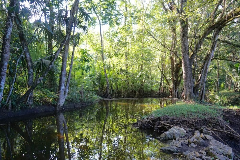 Remax real estate, Belize, San Ignacio, #2187 - 18 ACRES OF CREEK-SIDE LAND LOCATED BETWEEN SAN IGNACIO AND BELMOPAN, CAYO DISTRICT.