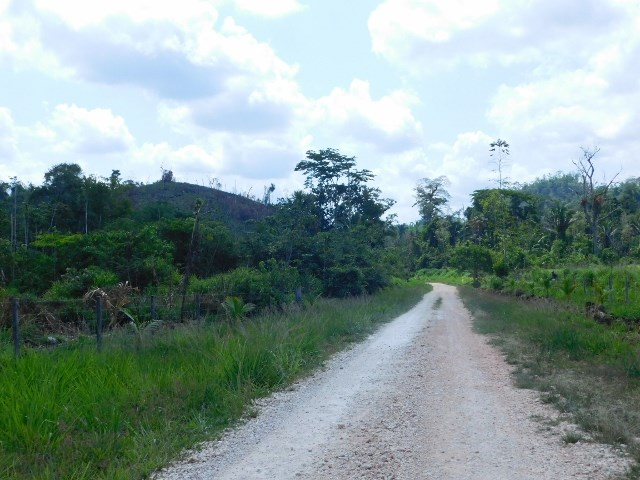 Remax real estate, Belize, Belmopan, #2204 - 9 ACRES OF LAND - NEAR BELMOPAN, CAYO DISTRICT