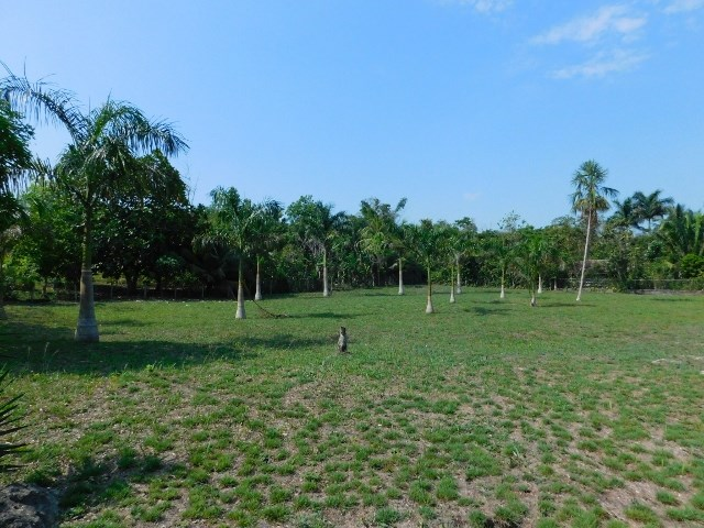 Remax real estate, Belize, Belmopan, # 2215 -  2 ADJACENT 0.4 ACRE RESIDENTIAL LOTS - near BELMOPAN, CAYO DISTRICT